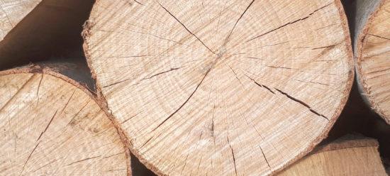 rondin de bois - chêne